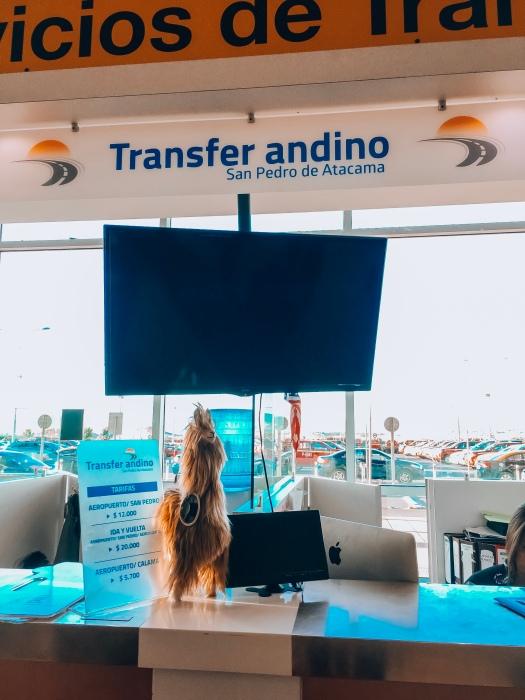 Balcão da Transfer Andino
